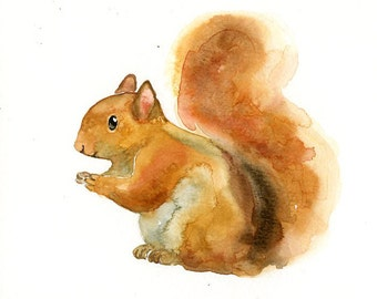 SQUIRREL Original watercolor painting 10x8inch