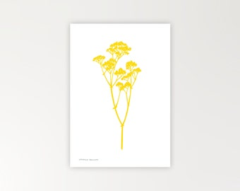 Gyp botanical print in bright yellow limited edition Risograph 'Botanique Electrique' collection baby's breath
