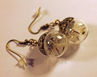 Dandelion Seed Earrings Real Flower Seeds in Glass Sphere dangle drop earrings Gift for Her Gift for Mother Gift for Girlfriend Mother's Day