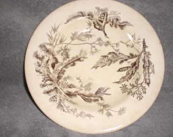 early 1900s wedgwood transfer ware soup bowl  brown transfer on slightly yellowed bowl with botanical branches and leaves