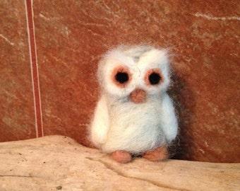 Little felted Owl