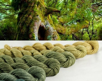 Mini Skeins Ombre Yarn Gradient Hand Dyed - Aztec Forest