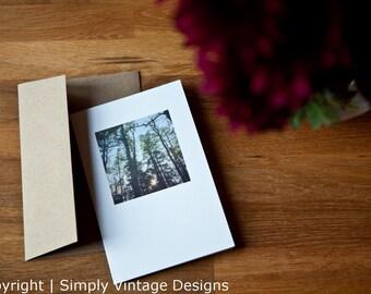4x6 Blank Photo Card - Summer Trees