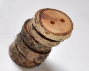tree branch buttons • 6  birch wooden buttons  • birch wood button
