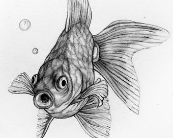 Original Drawing - Goldfish 17