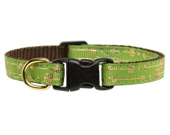 "Cat Collar - ""The Game Changer"" - Metallic Gold Arrow Print"