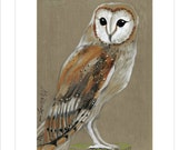 Barn Owl - Original mixed media Painting 6x8 inches Bird Winter Snow
