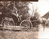Horse and Carriage - Vintage Photograph, Ephemera, Vernacular (A)
