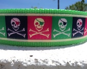 "Large Dog Collar Skull and  Crossbones 1.5"" wide Quick Release Buckle -  no martingales very limited ribbon"