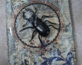 Altered, Vintage Papers Journal, Entomology