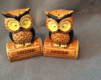 Arizona Owl Salt and Pepper Shakers