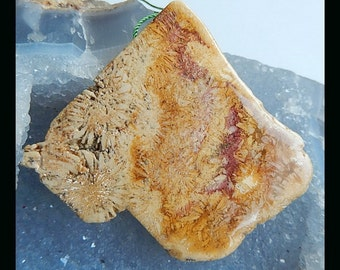 Nugget Indonesian Fossil Coral  Pendant Bead,54x61x9mm,32.0g(a0676)