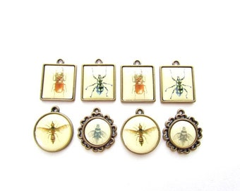 8 Insect Pendants / Insect bezel Pendants / Insect Charms