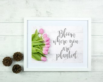 Bloom where you are planted quote digital print instant download