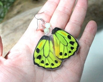 Green Birdwing Butterfly Earrings,  Nature Earrings, Limegreen Wings