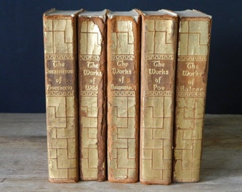 Set of Antique Leather Books. Classic Literature. Instant Library. Home Decor. Shabby Book Collection. Poe, Wilde, Balzac.....
