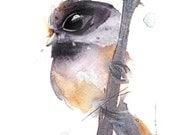 12 x 12 Bird Art, Black-capped Chickadee, Bird Art Print