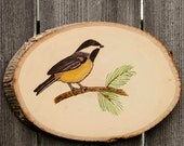Chickadee Wood Burned Wall Art, Nature, Bird Lover, Watercolor Painting, Birdwatcher,Chickadee,Wildlife,Bird,Made in Ohio,Rustic, Birder