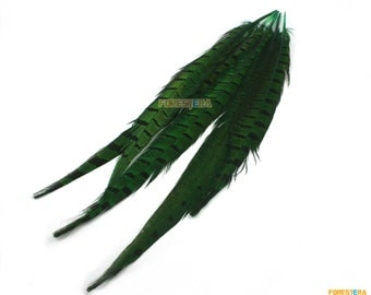 5 Pieces Green Feather 25-30cm (YM57)