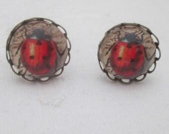 Earrings - red ladybird ladybug cabochon 12mm sepia bronze retro