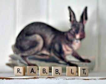 vintage wood block word RABBIT