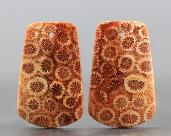 Drilled, High Grade Indonesian Fossilized Coral Earring Pair, Flower Pattern Cabochon, Petoskey Agatized Coral Fossil, Matching Cabochon