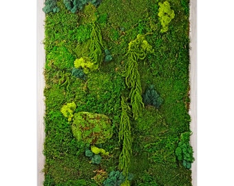 Moss Wall Garden- preserved moss, wall decor, home, office, gift, unique gift, mothers day, green, preserved, moss