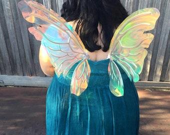 Fantasy Faery Wings  'Rainbow Iridessa' - Titanya Medium