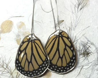Real Monarch Butterfly Wing Dangle Earrings in Sterling Silver kidney Hooks