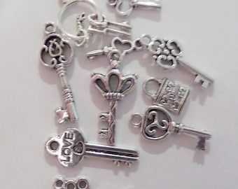 10CT Silver Toned Variety Package of Charms, Y31L
