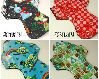 You choose January February March April Reusable Cloth Menstrual pads Quilter's cotton top & fleece bottom