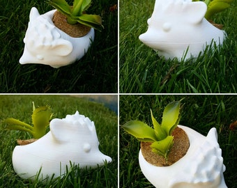 Hedgehog 3D Printed Planter Super Cute and Durable Indoor Outdoor