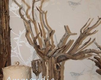 Driftwood guest book-tree-guest book