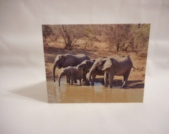 Beautiful Herd of Elephants Blank Note Card with envelope 4 x 5