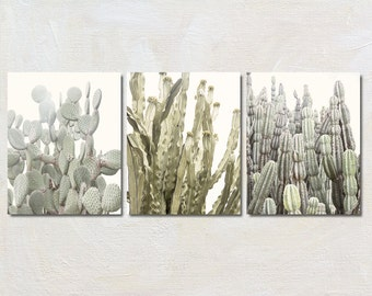 Three Cactus Art Print Set, Vertical Photography Set of 3 Prints, Modern Wall Decor, Desert Artwork Collection, Nature Picture Grouping