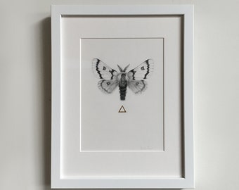 "Framed ""Moth to the Flame"" Original Graphite Drawing with Hand Embellished 24kt Gold Leaf - Simple White Frame"