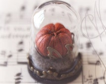 "Tiny and delicate globe Pumpkin Cabinet of Curiosities ""My Precious"""