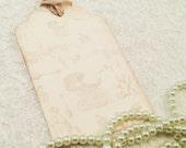 Toile Baby Favor and Gift Tags-Floral Shabby Chic Tags-Baby Shower Thank you Tags-Set of 6