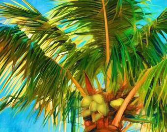 Coconut Palm, Palm Tree, Palm Tree Art, Turquoise art,  Fine Art Print, Coastal art, Coastal Decor, Beach Decor, Tropical, Prints