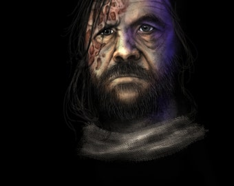 Sandor Clegane - The Hound - Game of Thrones - Original Painting on Canvas with Frame from artist
