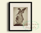 New Orleans Cemetery Angel 1 - Photo Print - 8x10