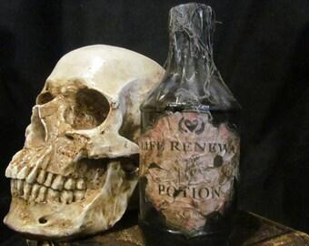 Halloween Potion Bottle/Jar Life Renewal Potion
