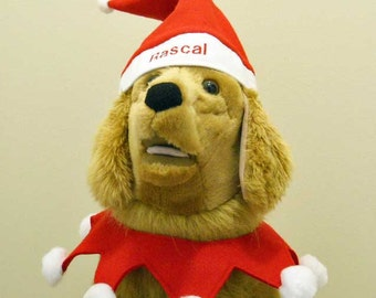 Christmas Dog Santa Personalized Costume Made to Order