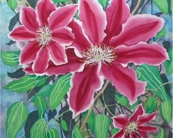Pink Clematis Original Watercolour Botanical Painting