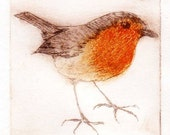 Robin Redbreast drypoint etching original miniature print handprinted limited edition