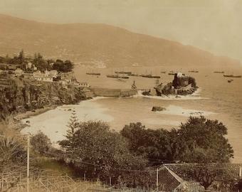 Antique original vintage, black & white sepia photo of Madeira Island