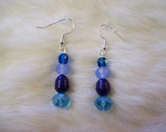 Blue Pearl Crystal Earrings
