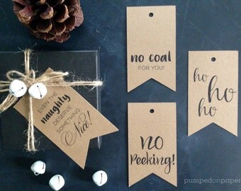 christmas gift tags - assorted kraft christmas tags - banner style tags - holiday gift wrap - christmas packaging - naughty nice - set of 20