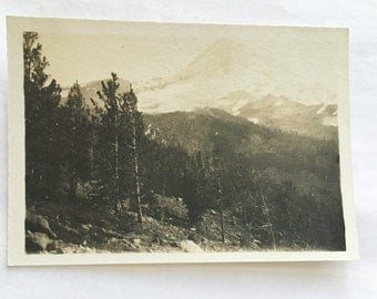 antique photo of mountain and forest