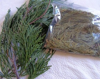 Cedar leaves, Smudging Herb, ceremony, flat cedar, Mt.Shasta Cedar